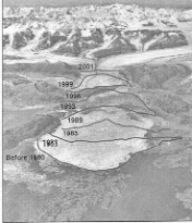 Wastage on Columbia Glacier from 1980 to 2001