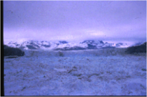 Calving Margin of Columbia Glacier